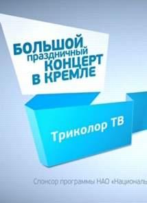 Большой праздничный концерт в Кремле (5.12.2015)